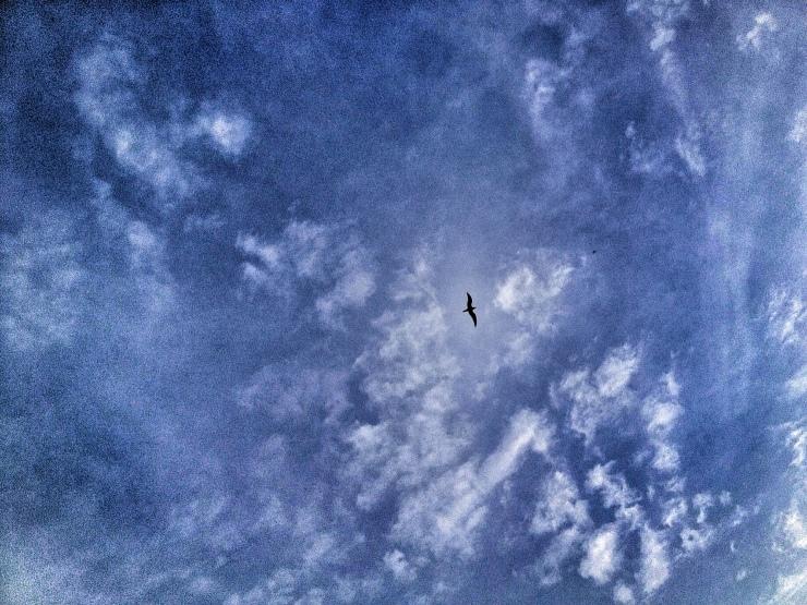20120327-004420.jpg